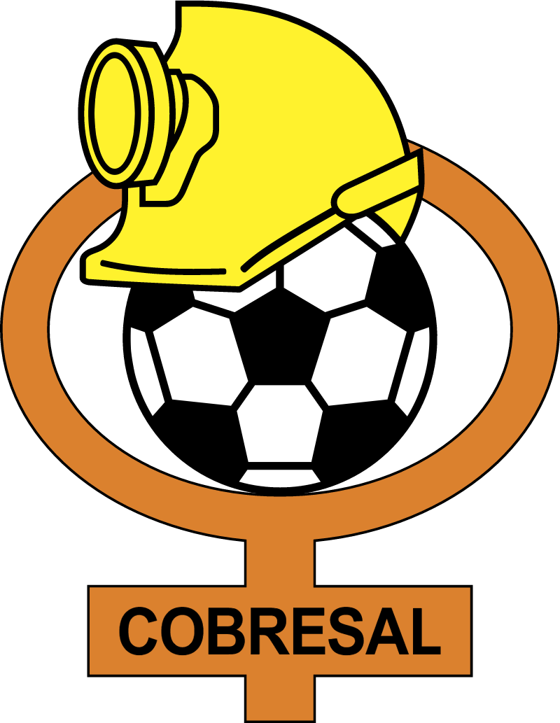 cd cobresal vector