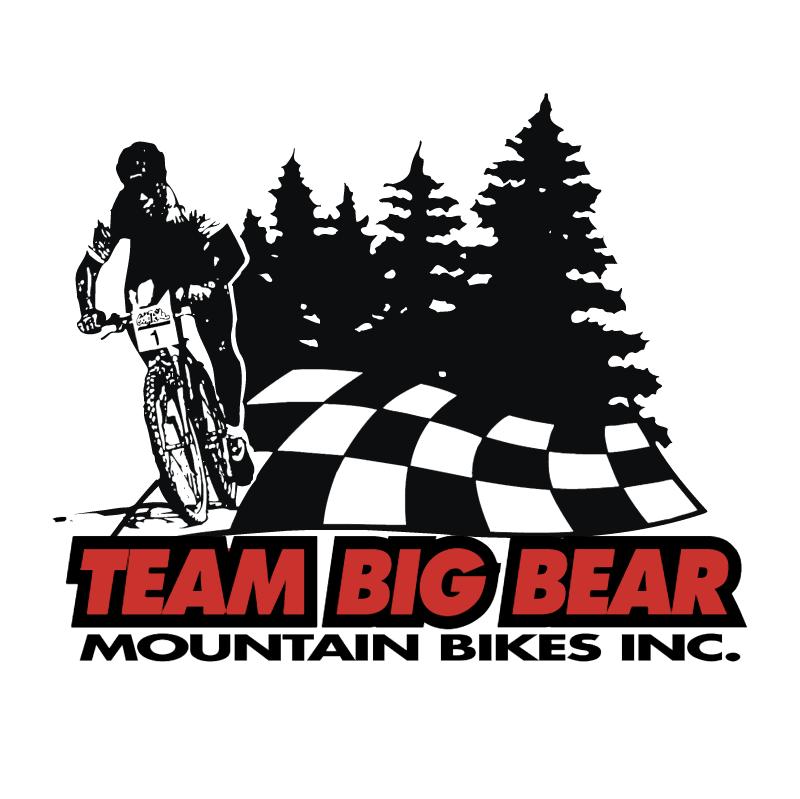 Team Big Bear vector