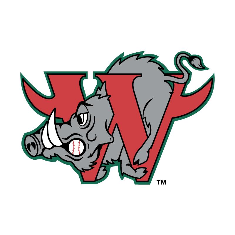 Winston Salem Warthogs vector