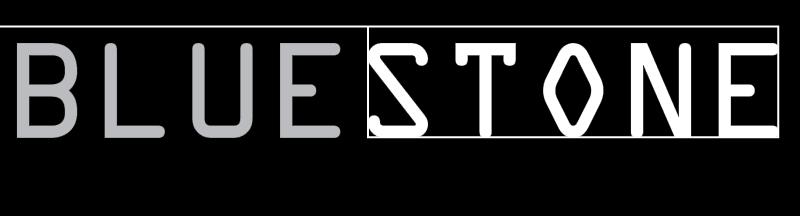 Blue Stone logo vector