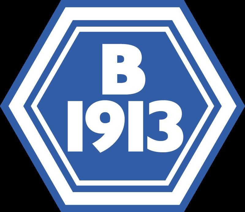 B1913 vector