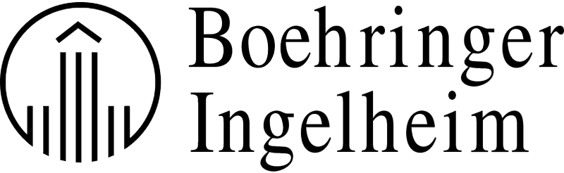 BOEH INGEL vector