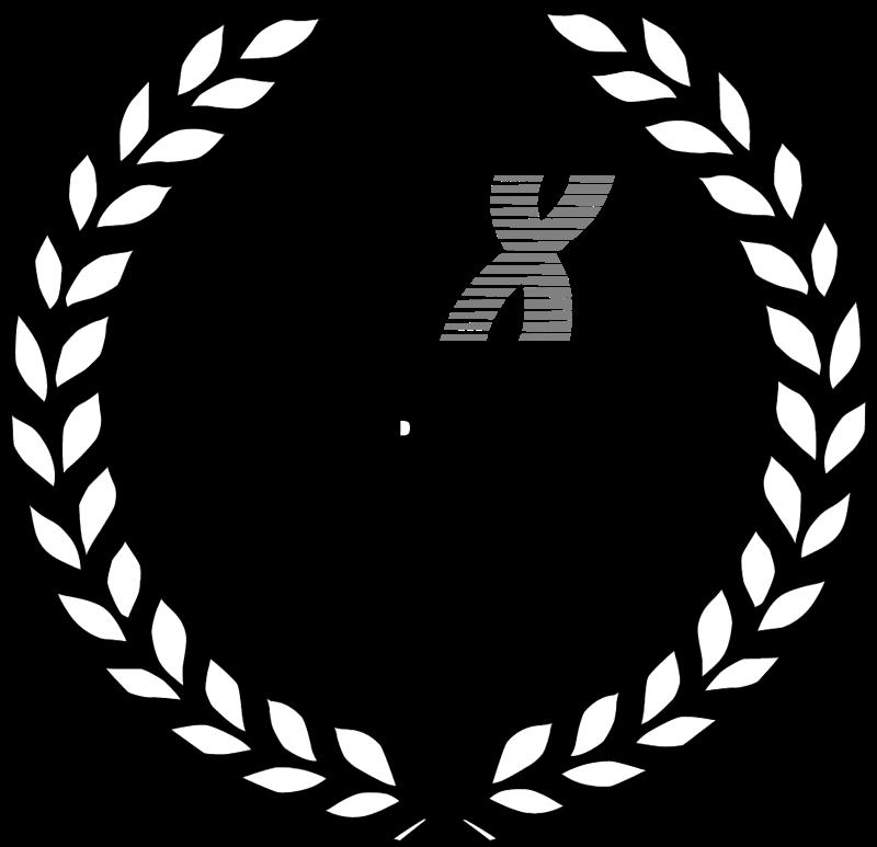 CCX vector