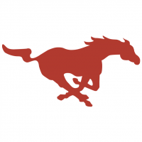 Southern Methodist Mustangs vector
