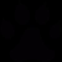 Dog track vector