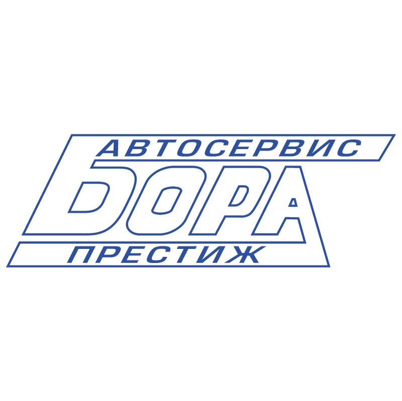 Bora 21244 vector