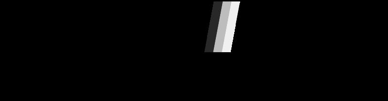 BWS vector