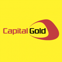 Capital Gold vector