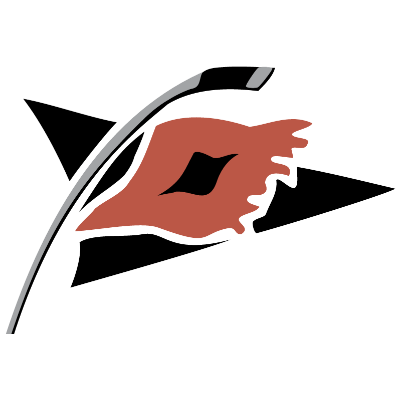 Carolina Hurricanes vector