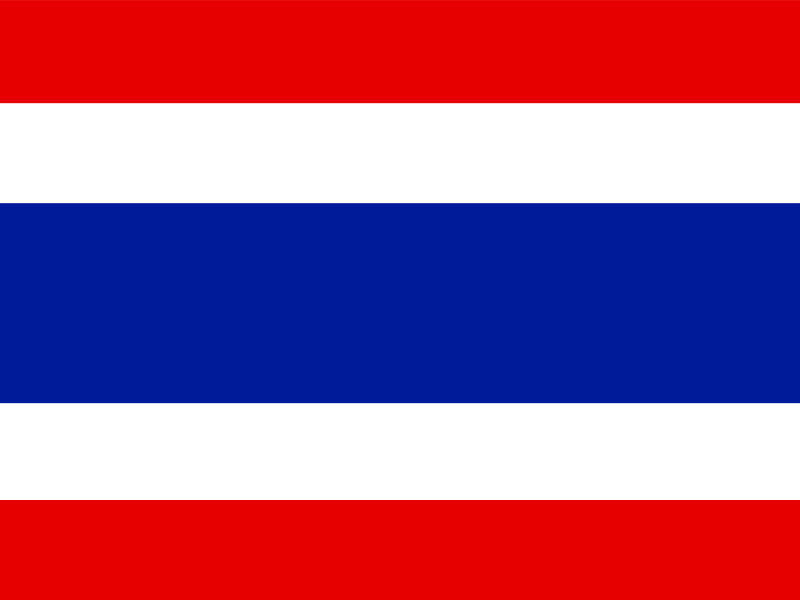 Flag of Thailand vector