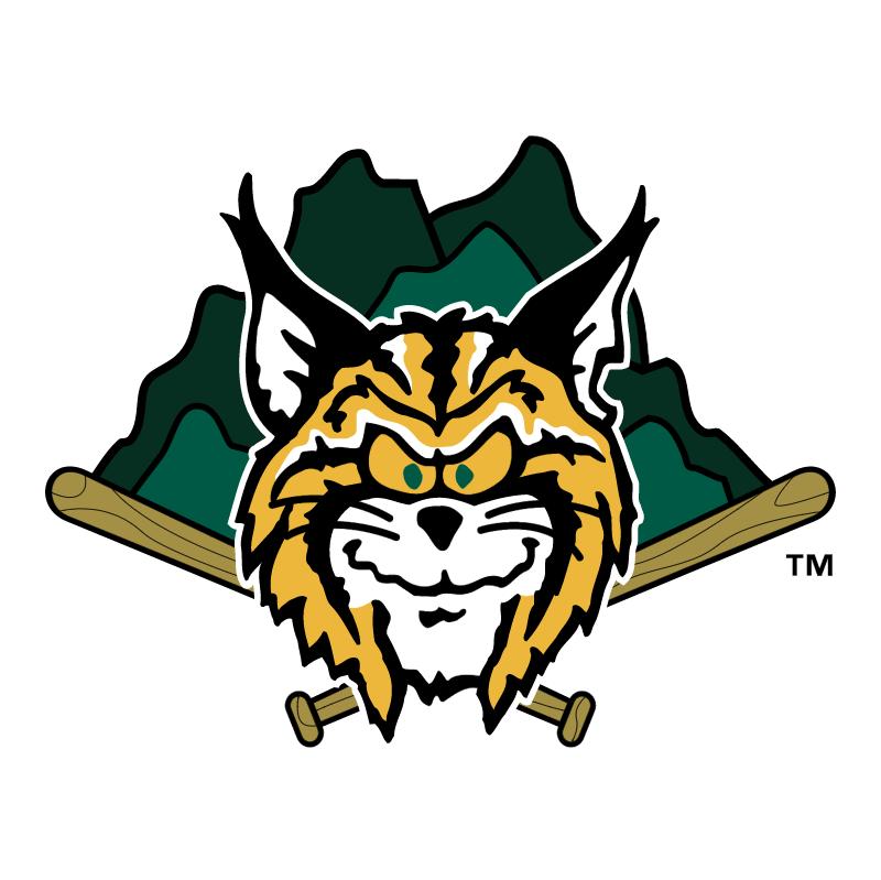 Lynchburg Hillcats vector logo
