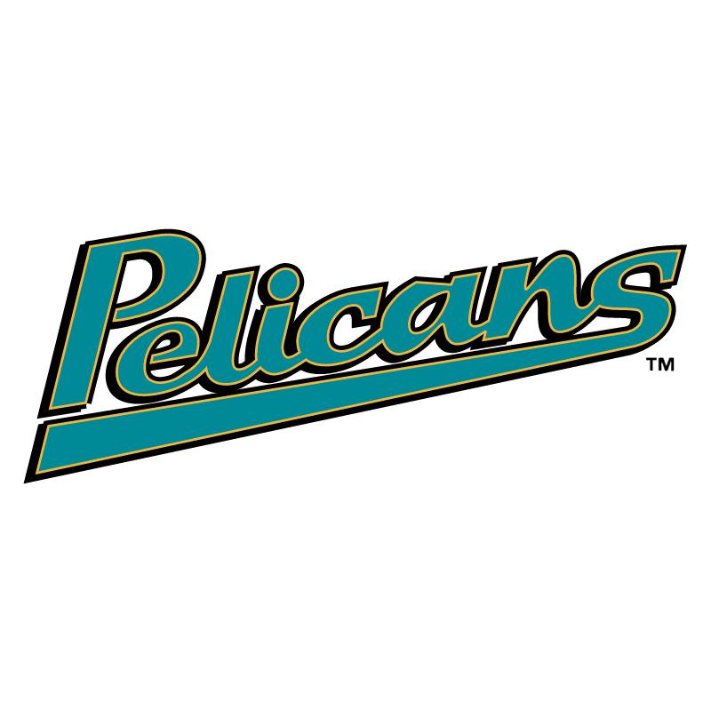 Myrtle Beach Pelicans vector