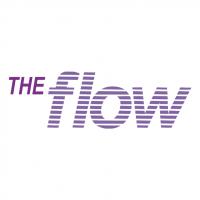 The Flow vector