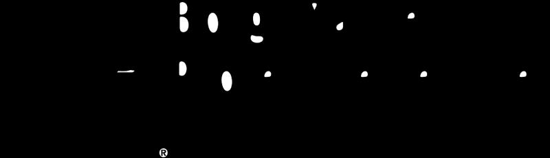 BORG WARNER SECURITY vector logo