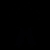 Insignia and ribbon vector