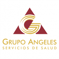 Grupo Angeles vector