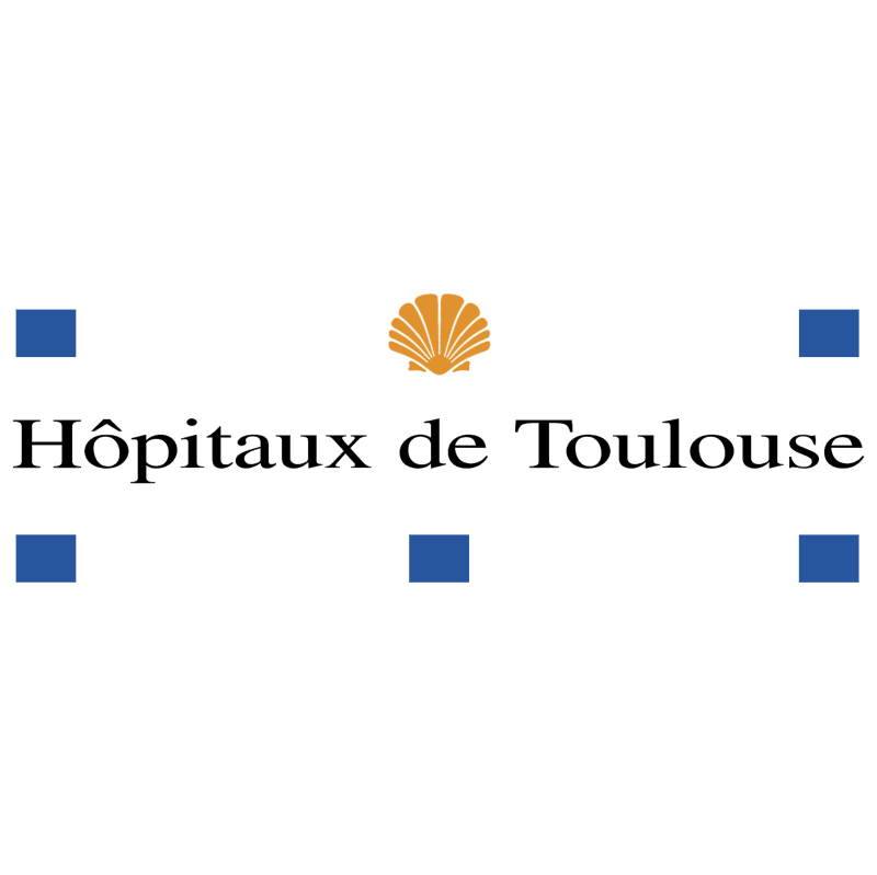 Hopitaux de Toulouse vector