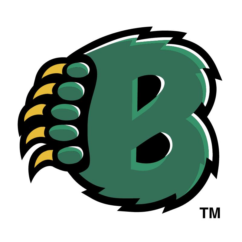 Baylor Bears 75996 vector