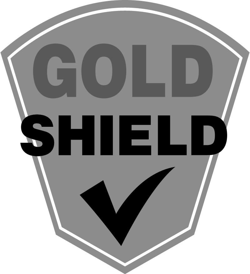 Gold Shield vector