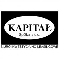 Kapital vector