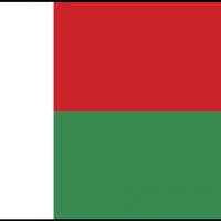 malagasy vector