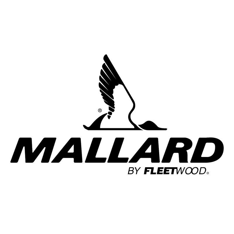 Mallard vector
