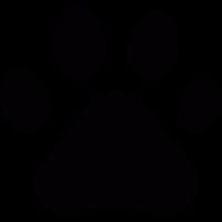 Feline track vector