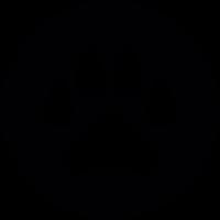 Bobcat footprint vector