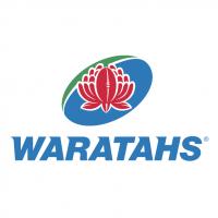 Waratahs vector