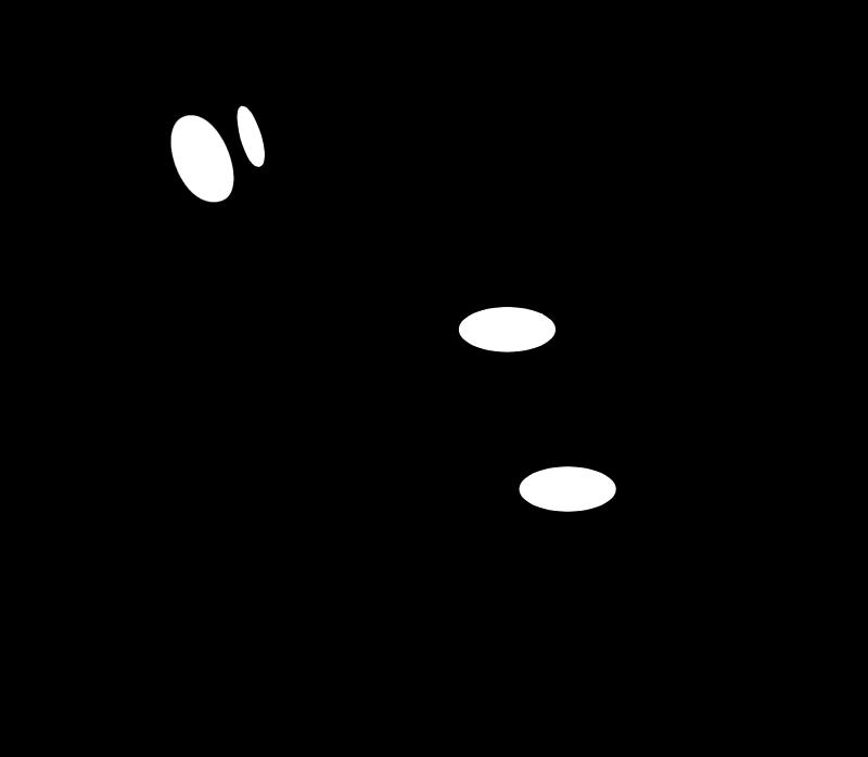 ALIEN SKIN SOFTWARE vector