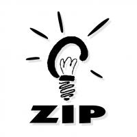 ZIP vector