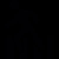 Zebra crossing vector