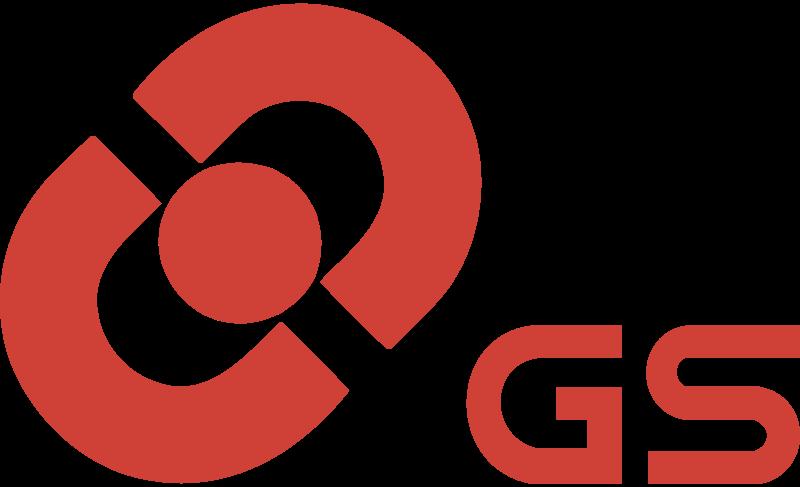 GS BATTERY vector