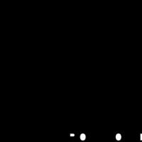 Fennway vector