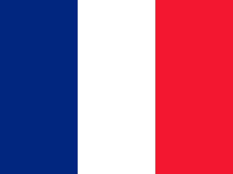 Flag of Saint Barthelemy vector