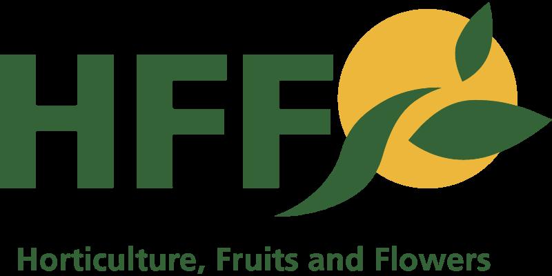 HFF vector