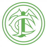 Ipiranga Football Club de Manhuacu MG vector