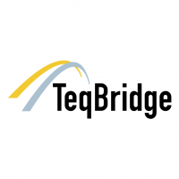 TeqBridge vector