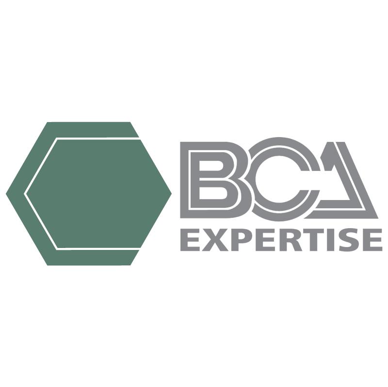 BCA Expertise vector