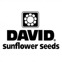 David vector