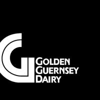 Golden Guernsey vector