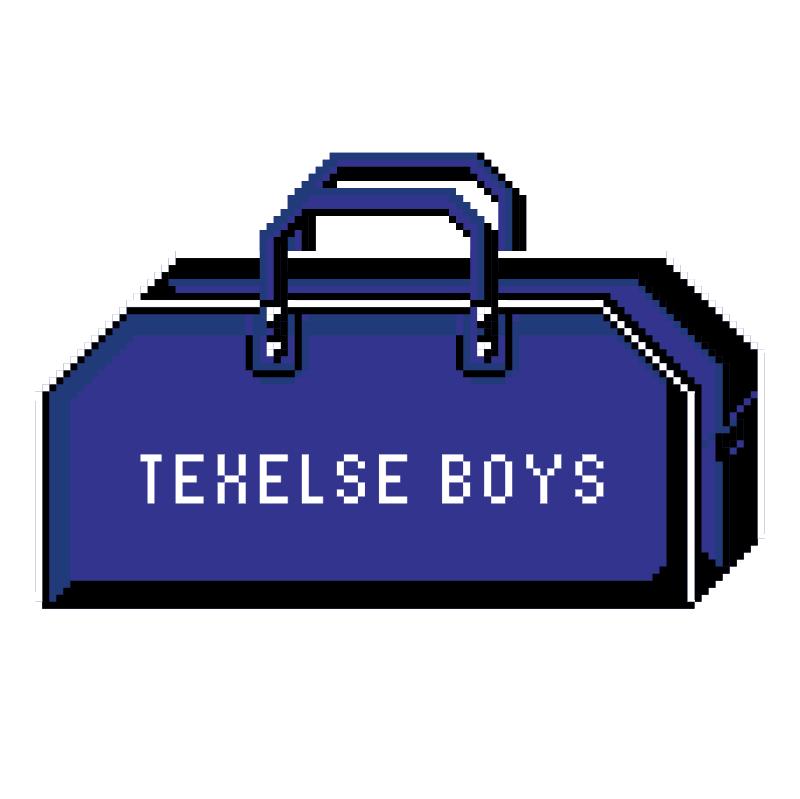 Texelse Boys vector