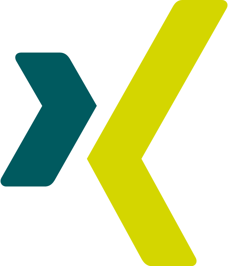 Xing icon vector