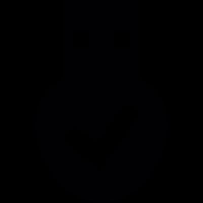 USB storage device detected vector logo