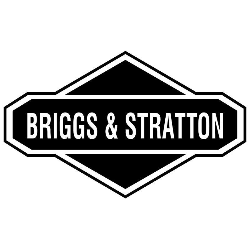Briggs & Stratton 4197 vector