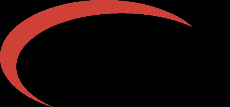 EAGLE WIRELESS vector logo