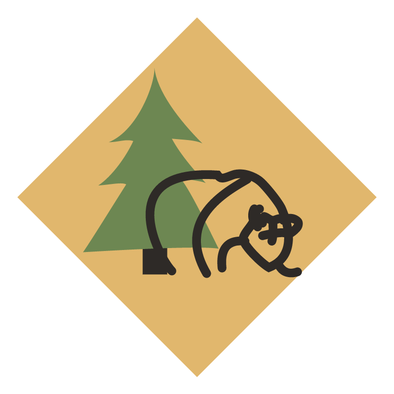 Karelia Evroimpex DSP vector
