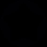 Big Star button vector