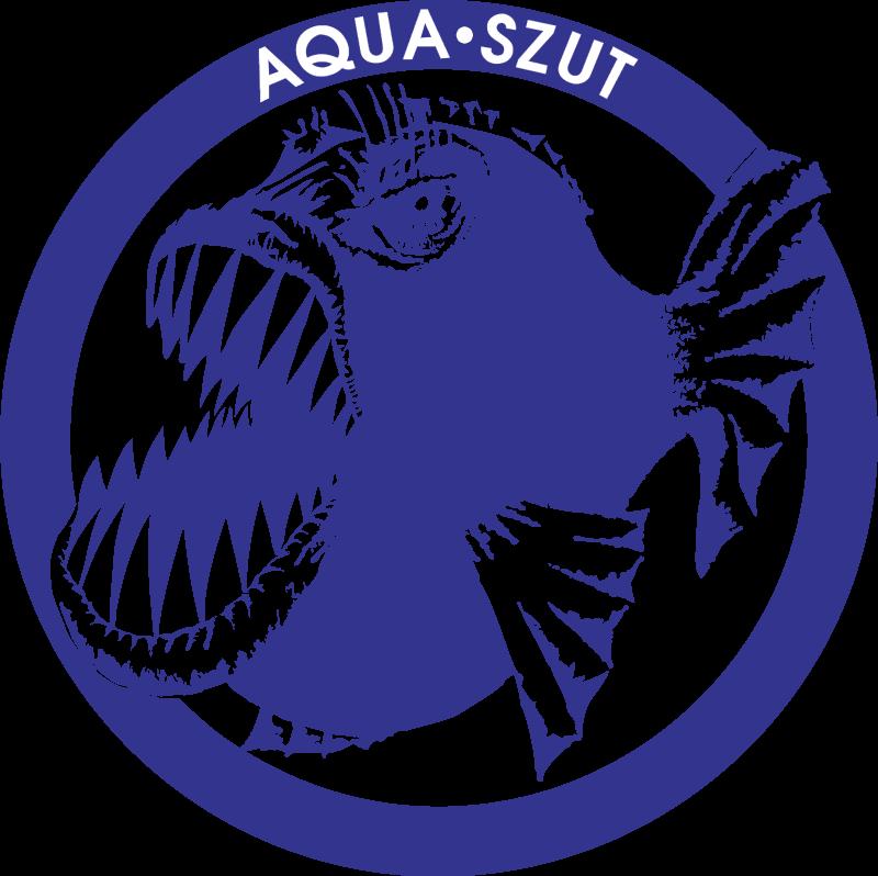 Aqua vector logo