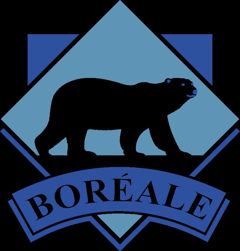 Boreal logo vector